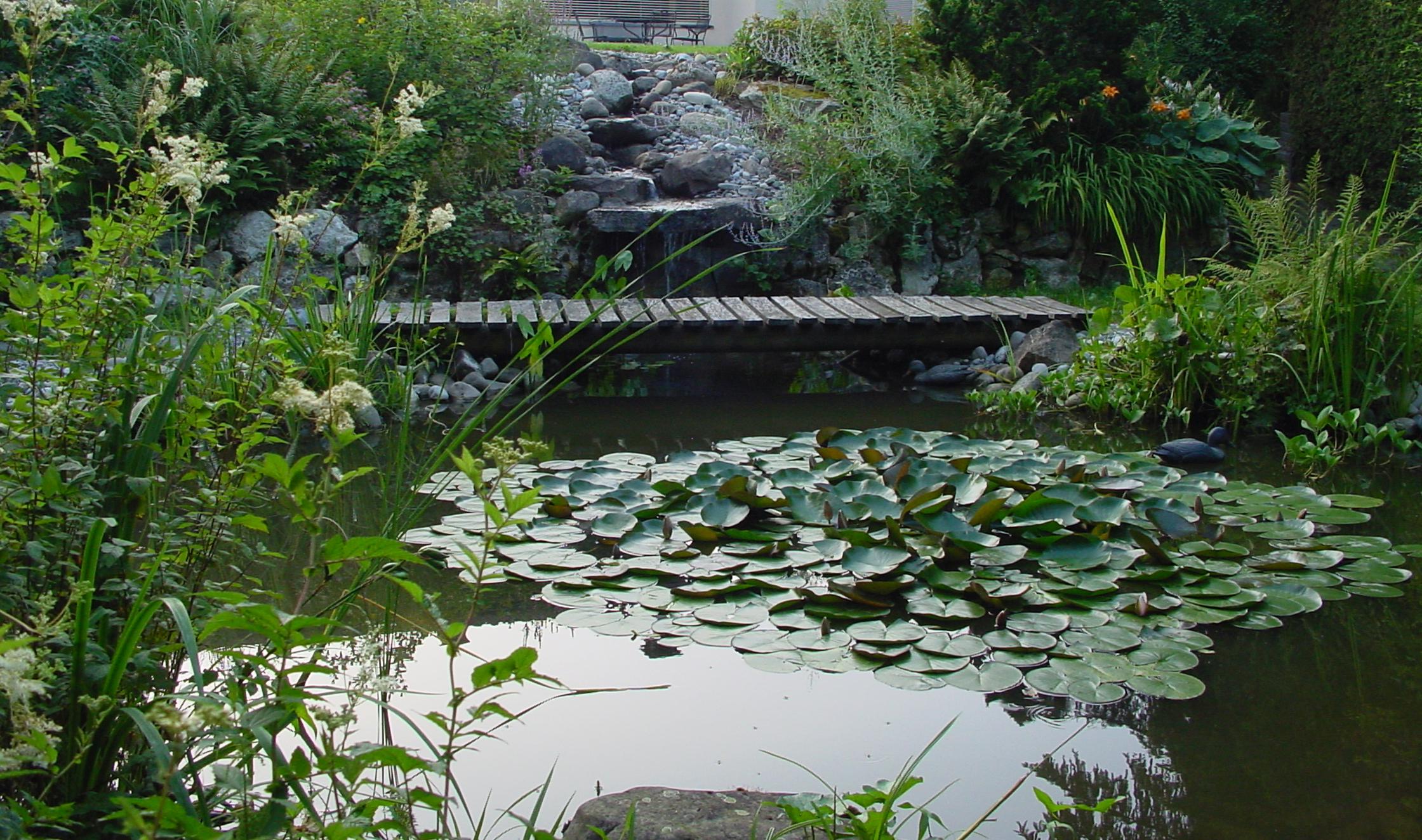 Wasser m ller gartengestaltung gmbh for Gartengestaltung wasser